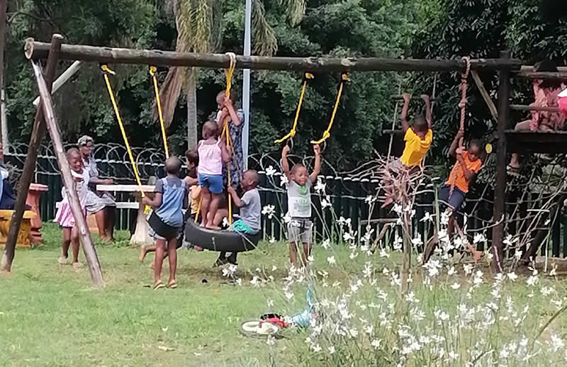 Jungle Gym gets a new lease on life